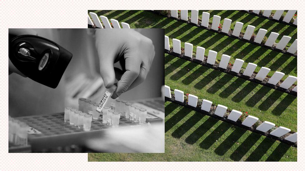 Cemetery composite