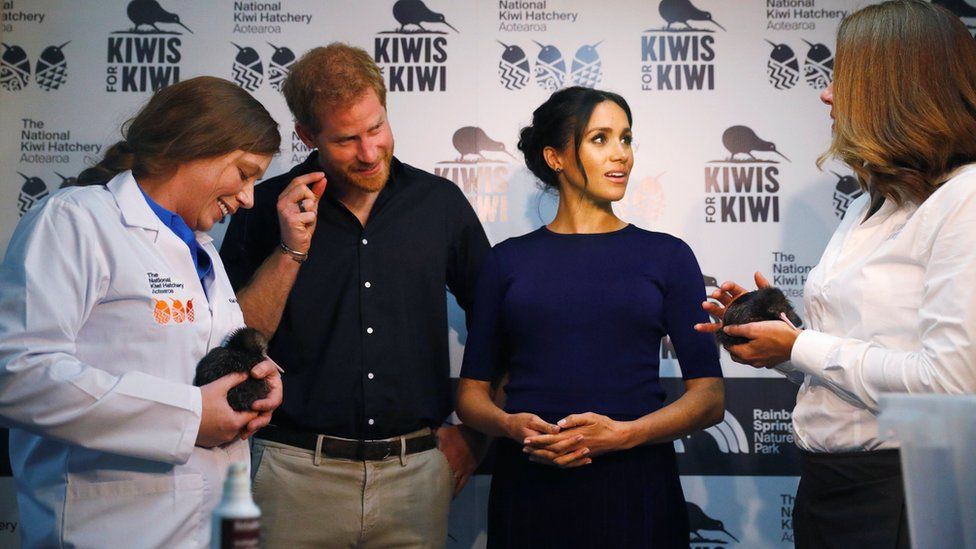 Prince Harry and Meghan, the Duchess of Sussex talk to staff as they look at kiwi chicks as they visit the National Kiwi Hatchery at Rainbow Springs, Rotorua, New Zealand