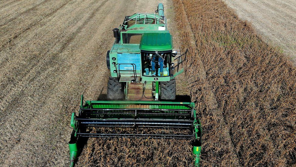 Farmer Mark Catterton drives a John Deere Harvester while harvesting soybeans during his fall harvest on October 19, 2018 in Owings, Maryland.