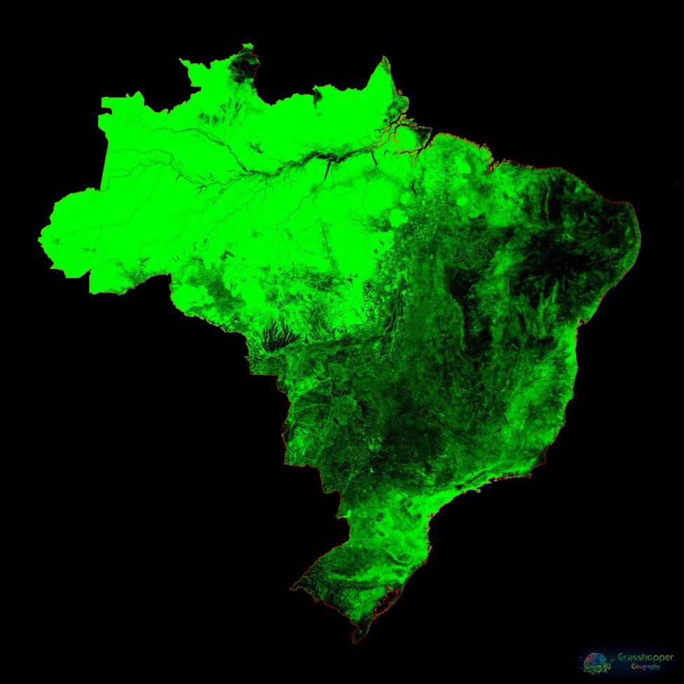 Imagem mostra o mapa do Brasil colorido em verde pelo cartógrafo húngaro Robert Szucs