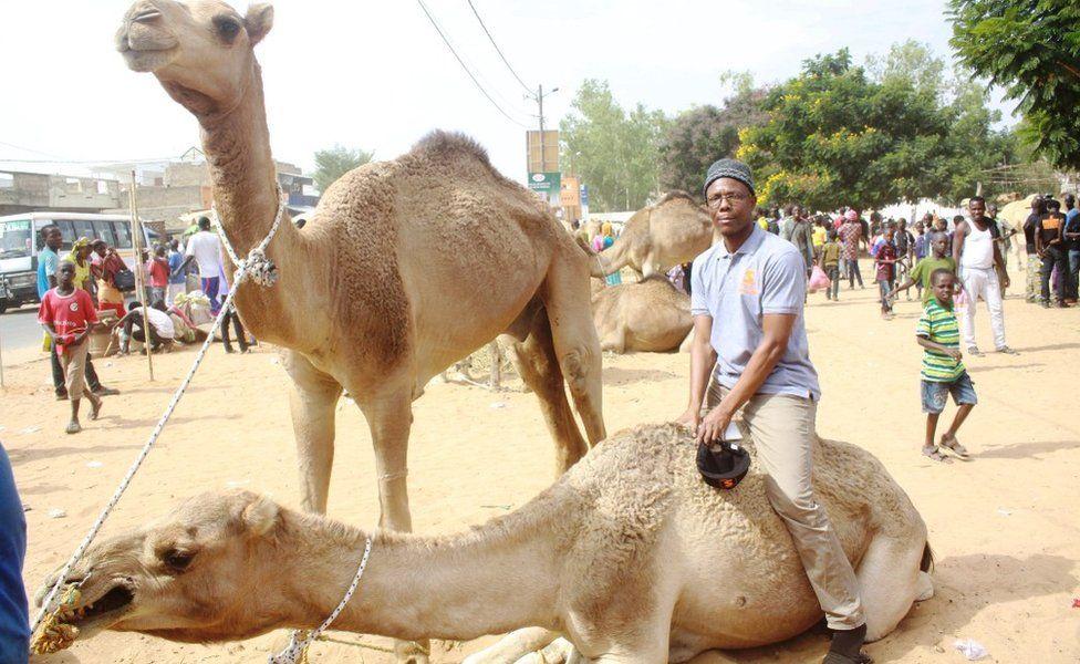 Man sitting on a camel