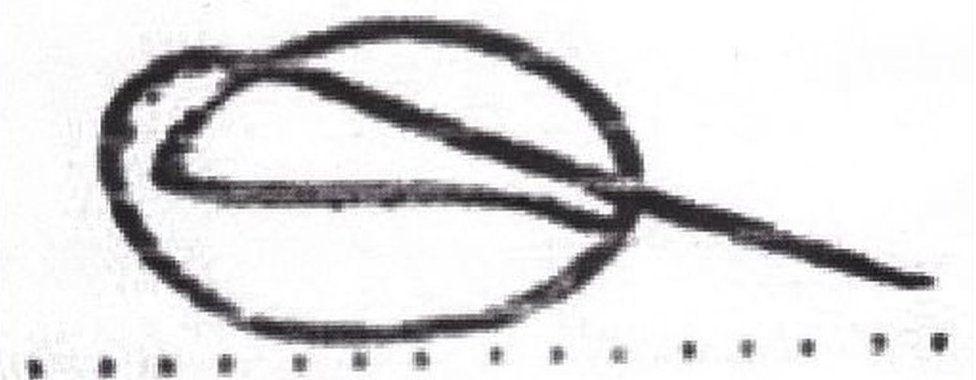 Signature illustration one