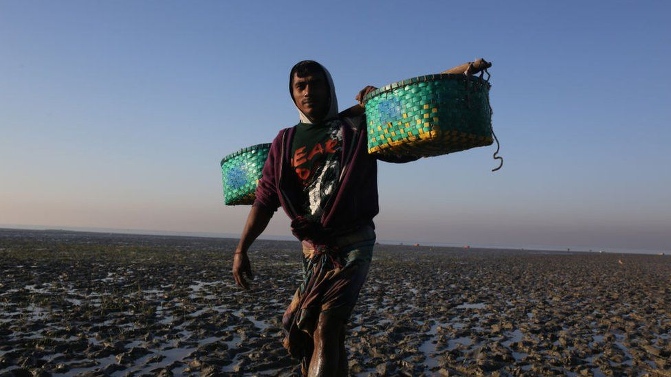 Bangladesh bans fishing for 65 days to save fish
