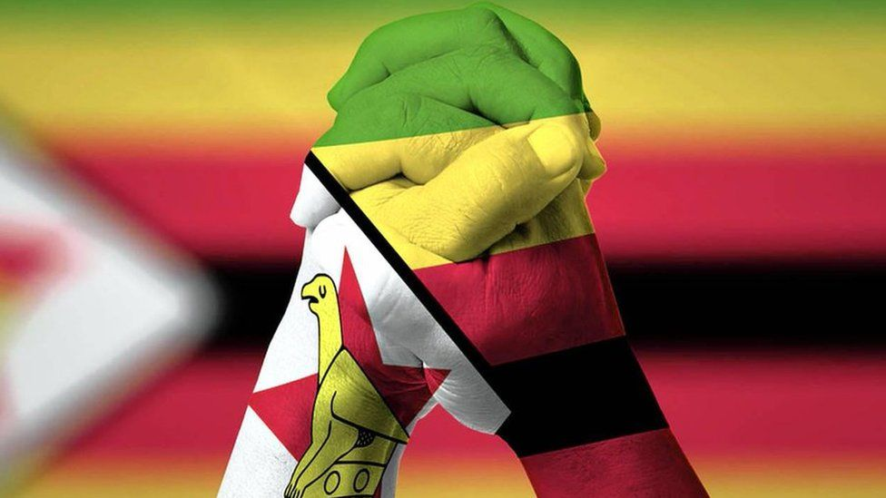 Zimbabwean Lives Matter graphic - hands clasped over Zimbabwe flag