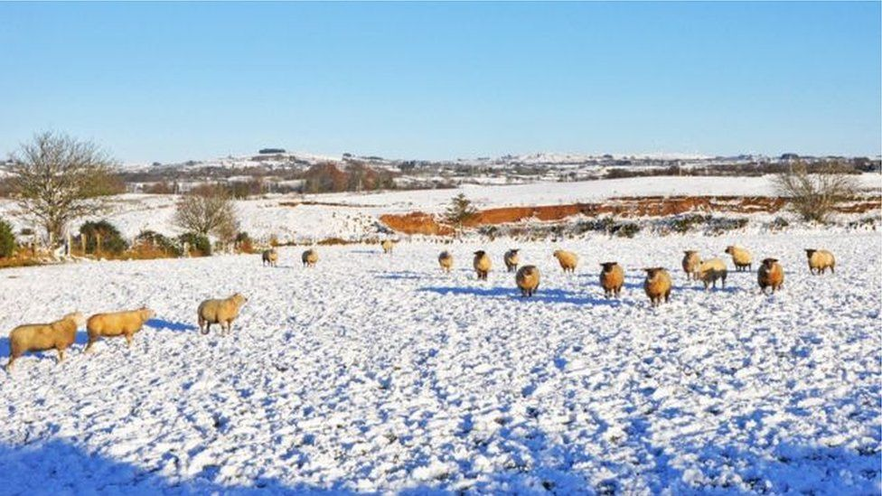 The scene at Mountfield near Omagh, during the snow in Northern Ireland last year