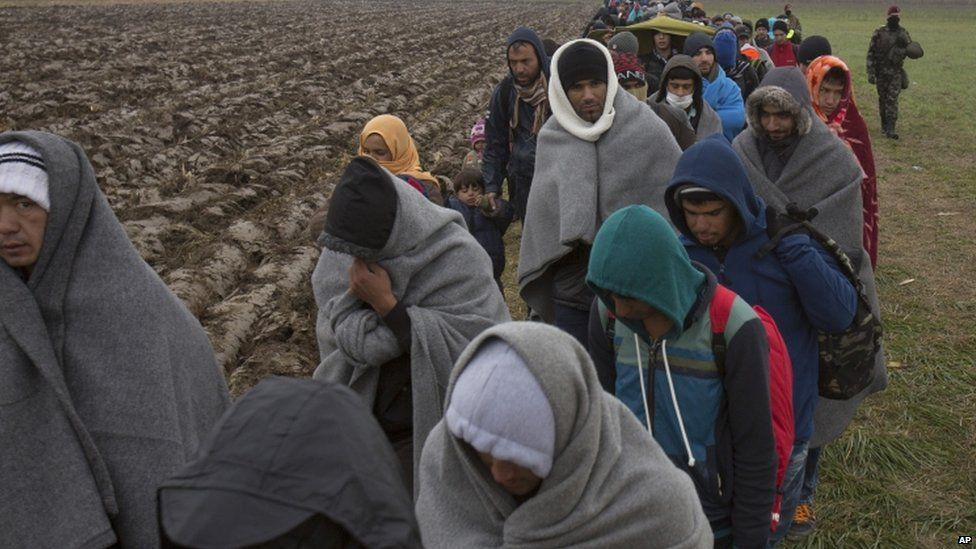 Migrants walk through a field in Slovenia