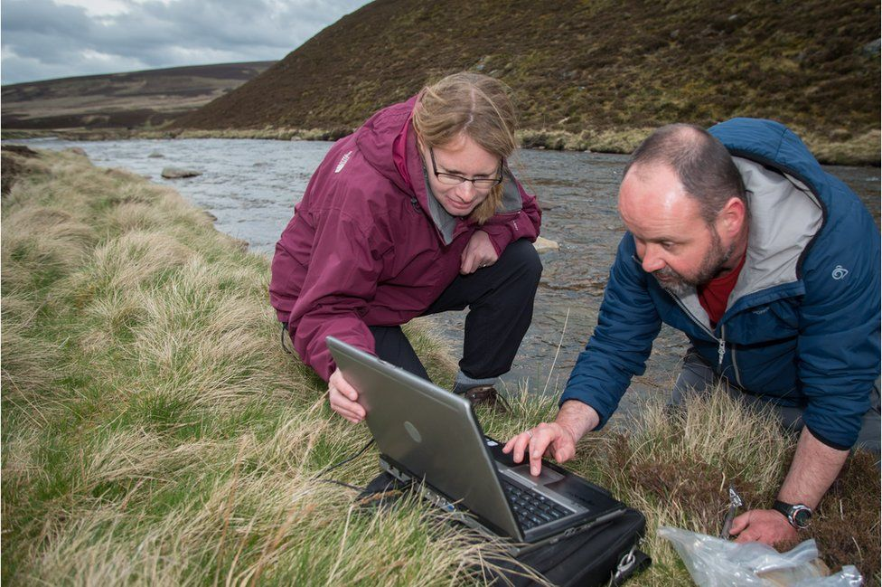 Scientists from the James Hutton institute check water temperature loggers on the River Gairn in Scotland