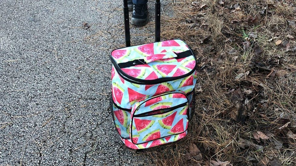 A watermelon-patterned cooler shown by the side of the road; Georgia's Troup County Sheriff's Office found a dead baby inside