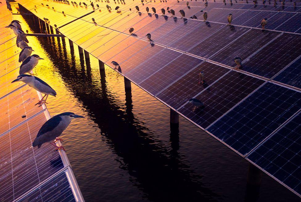 Solar power plan, Zhejiang Province, China