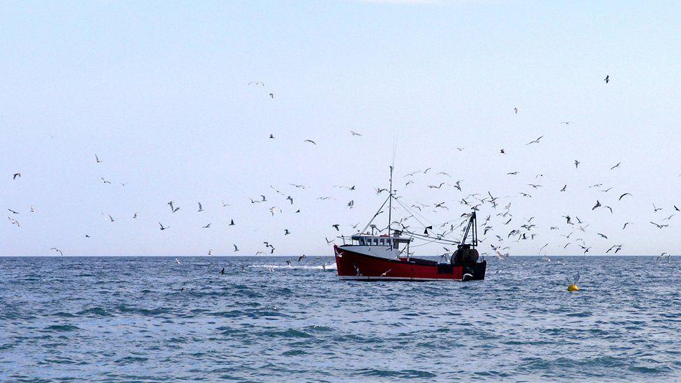 A flock of birds around a fishing trawler - stock photo