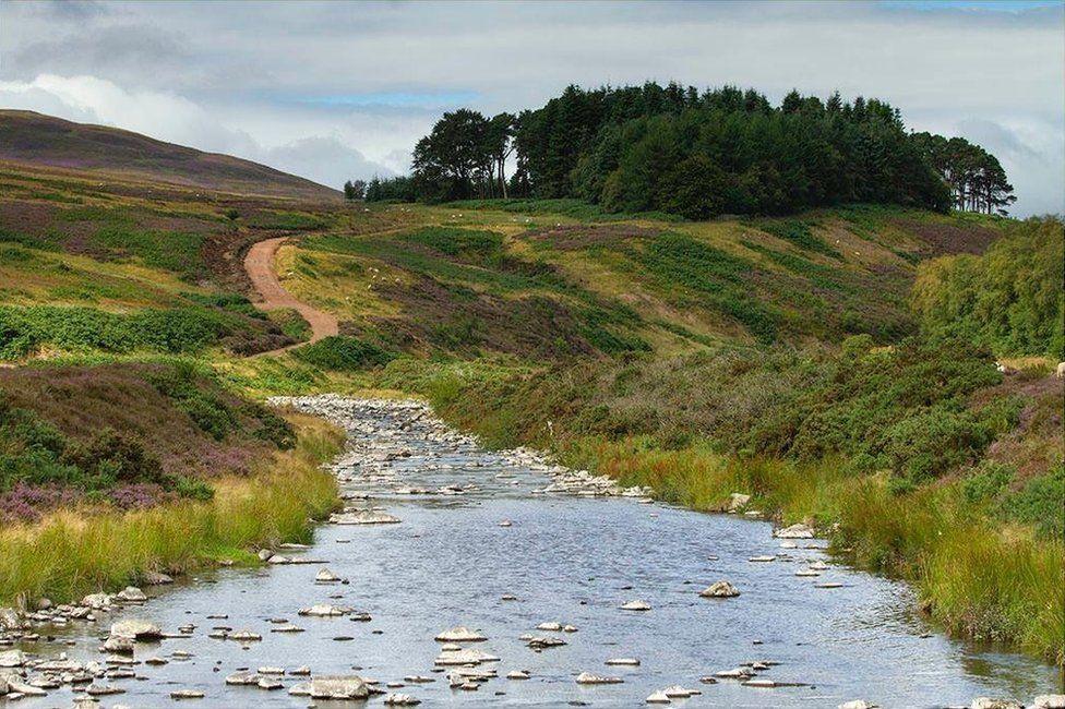 Stream and path