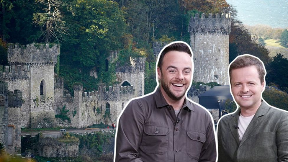 Ant and Dec and Gwyrch castle