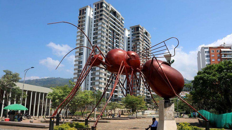 Муравьев в департаменте Сантандер едят с незапамятных времен - уже более 1000 лет, и для местных жителей эти насекомые имеют большое значение и как вкусная и полезная еда, и как источник дохода