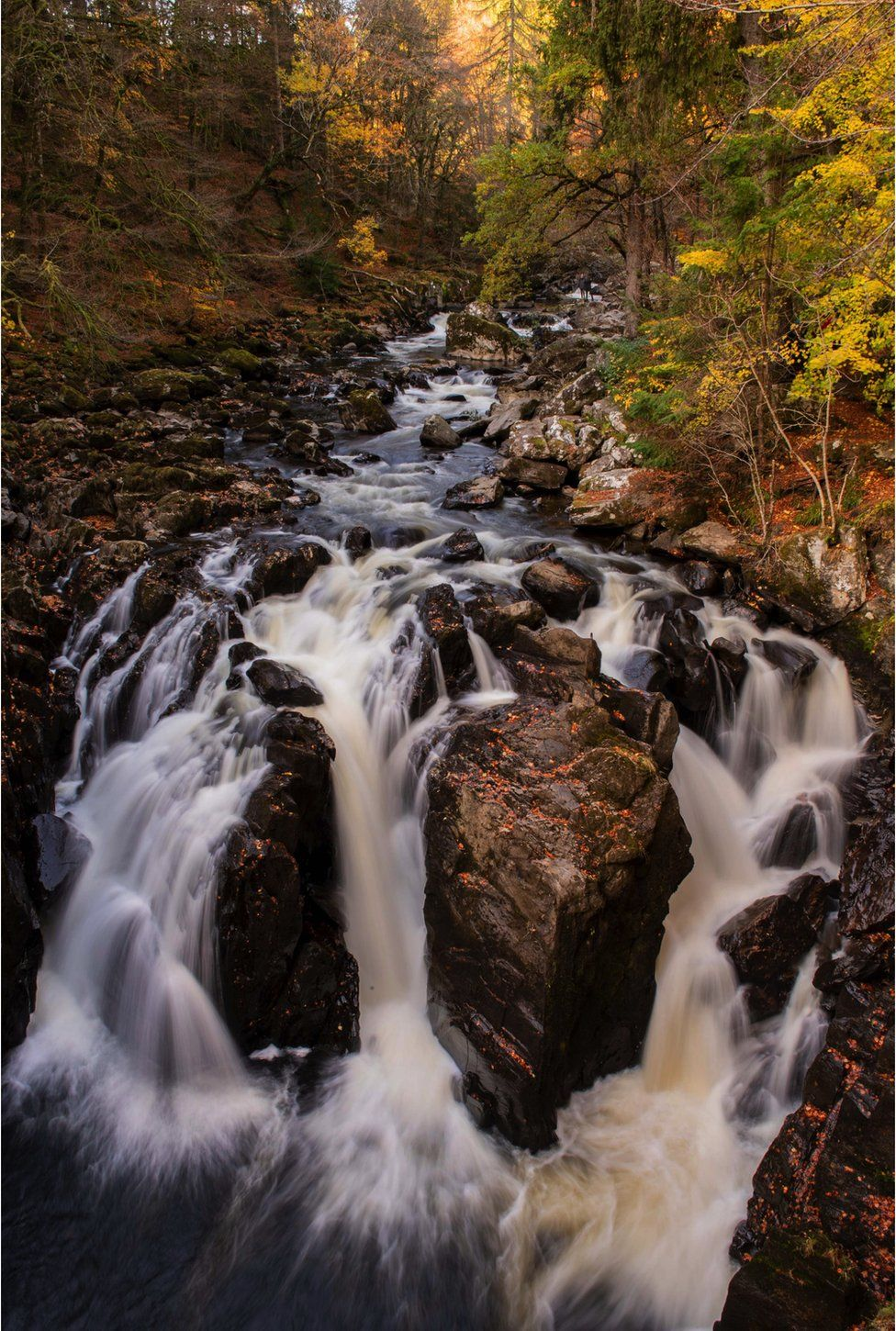 Stream at the Hermitage in Dunkeld
