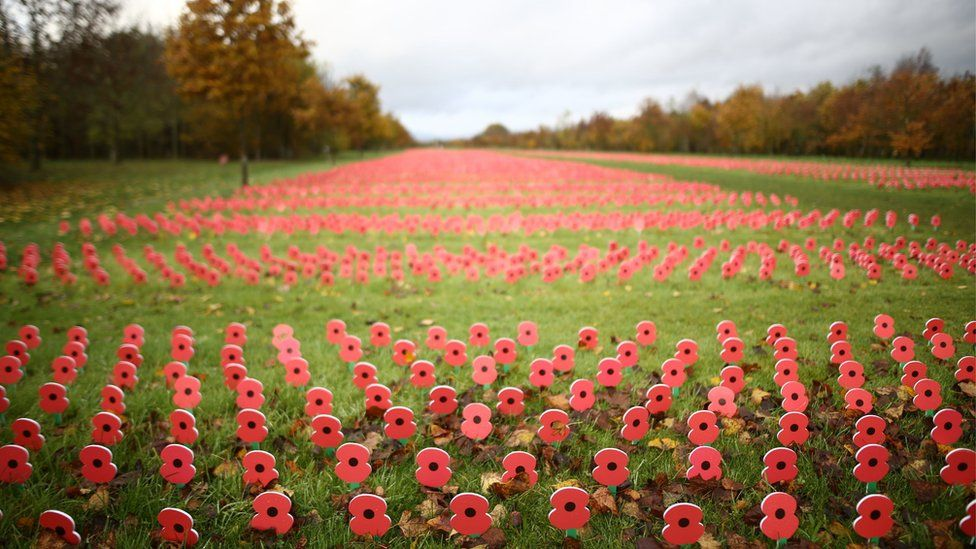 The Centenary Field of Thanks at the National Memorial Arboretum, Alrewas, Staffordshire