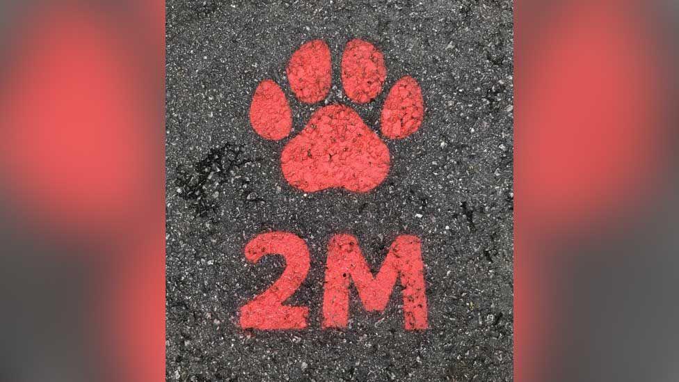 Zoo paw print sign