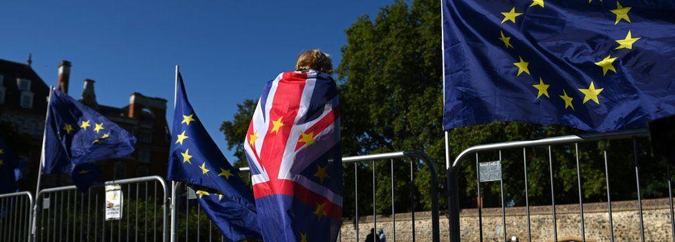 EU flags and protestor