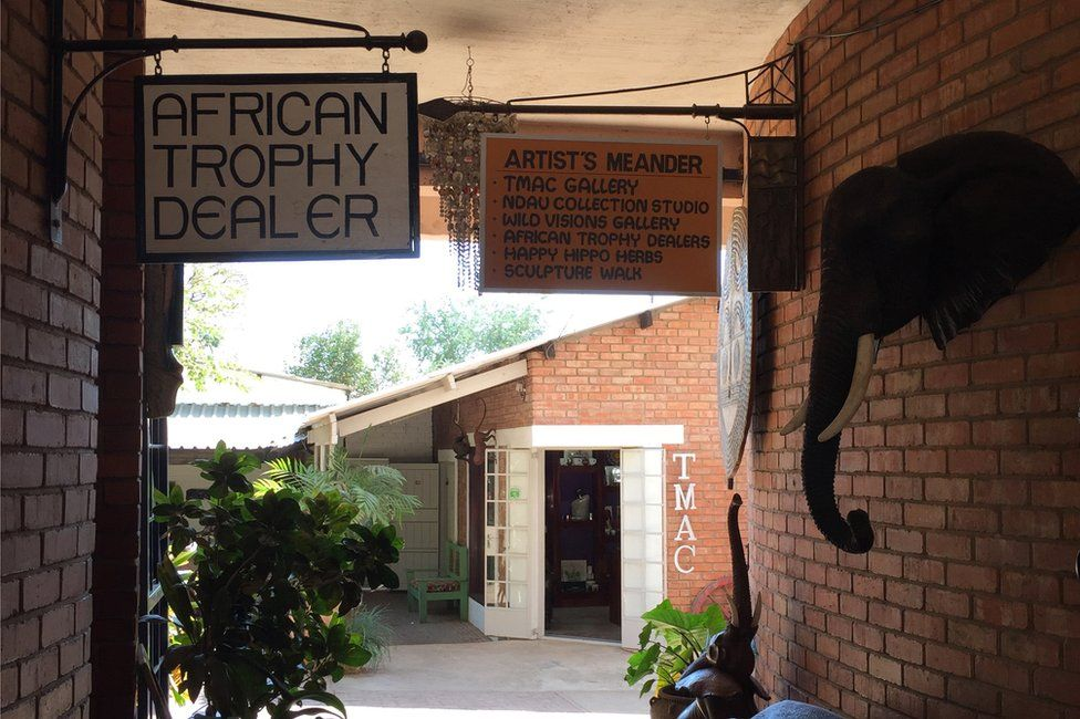 A trophy hunting company welcomes customers in Victoria Falls, Zimbabwe