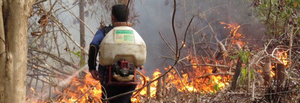 This handout photo taken on 25 September 2015 and released on 9 October 2015 by the Borneo Orangutan Survival Foundation shows a technician from the BOSF Samboja Lestari Orangutan Reintroduction Program trying to put out fire using a fertilizer sprayer filled with water in Samboja, in Indonesia's East Kalimantan.