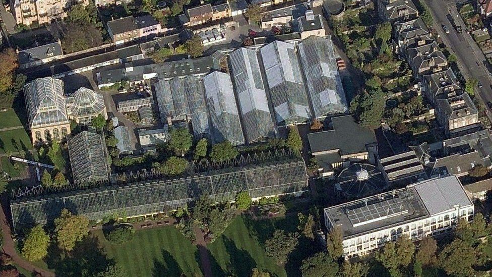 Glasshouse from above