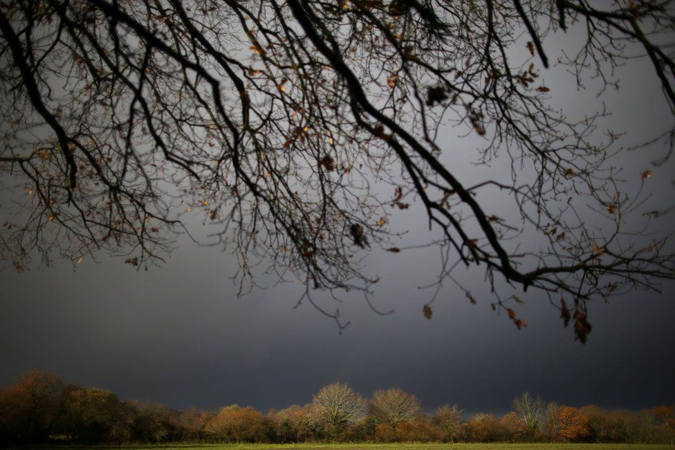 A wintry view of a farm field