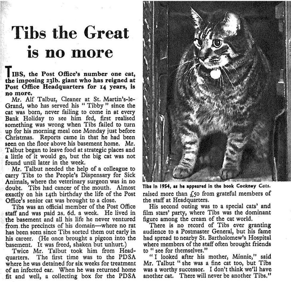 Obituary of Tibs
