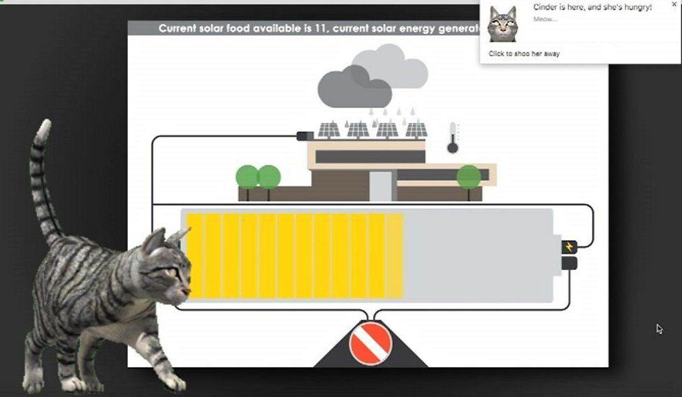 Digital cat