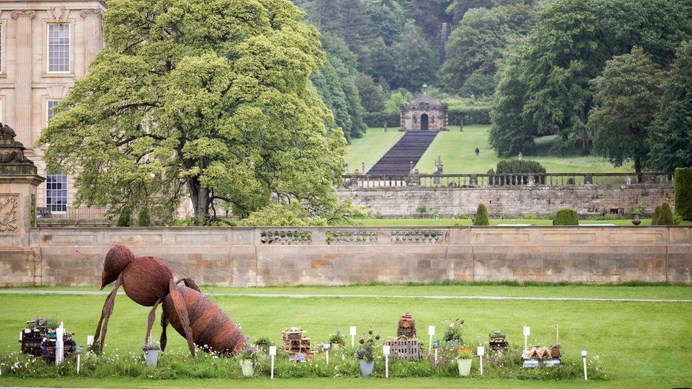 A garden with a giant ant in it near Chatsworth House