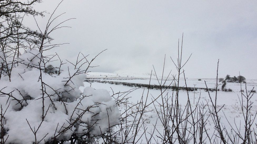 The scene on Slemish Mountain on Wednesday morning