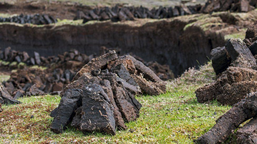 Peat bog, Shetland