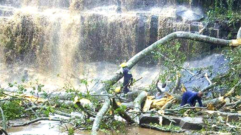 Picture of waterfall with fallen down tree in the pool and fireman