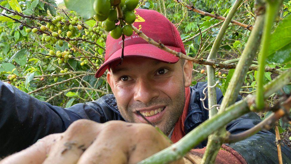 Luis Giraldo picking coffee at the Santa Isabel estate