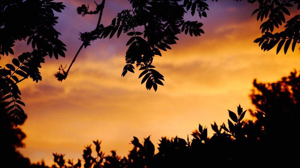 Abingdon sunset