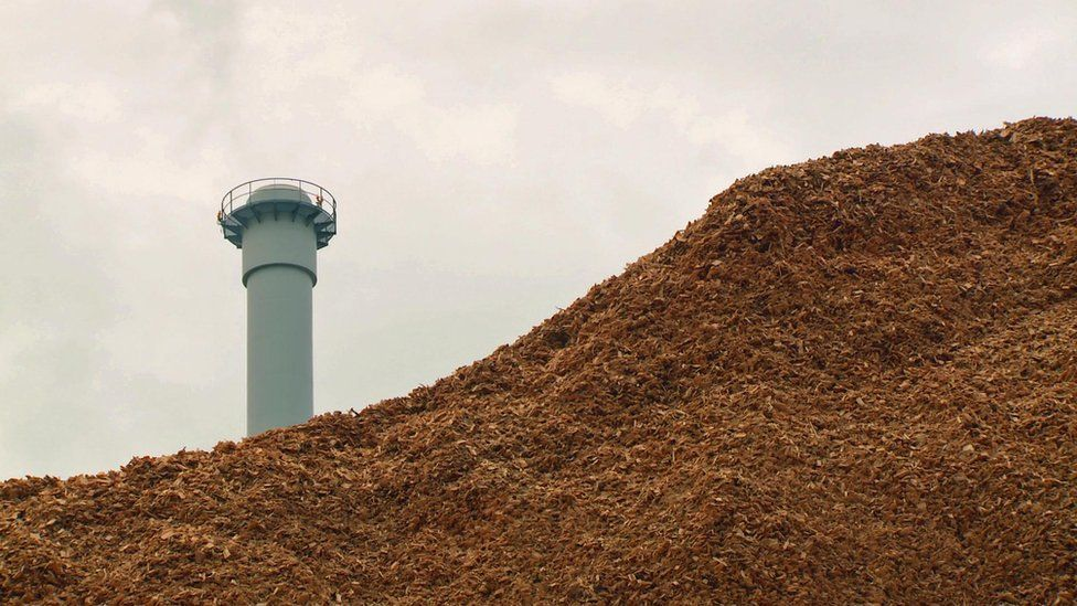 Forestry waste biomass fuel and power station smoke stack