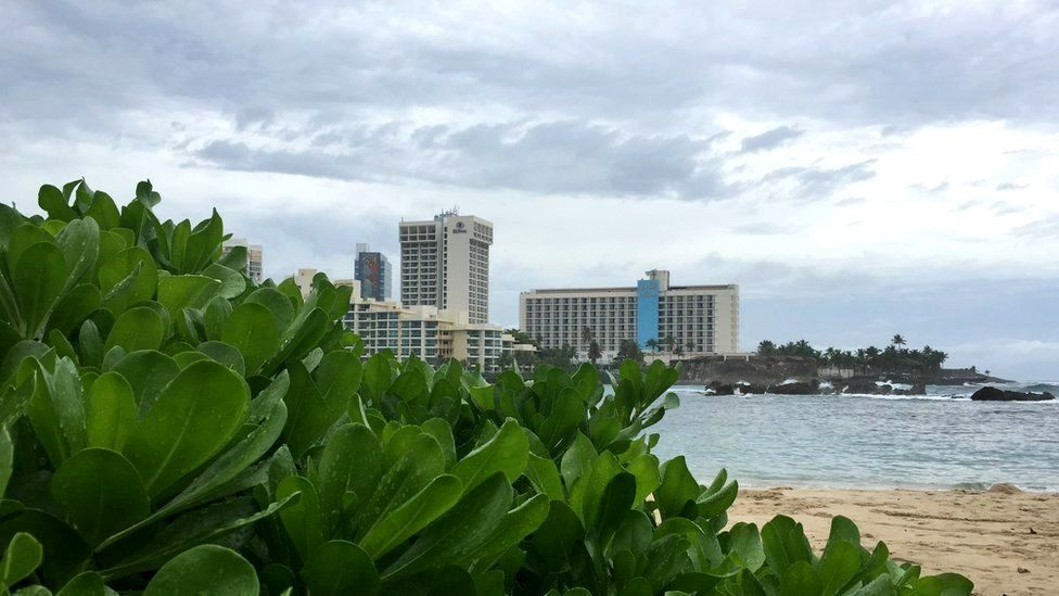 Puerto Rico beaches, buildings and plants
