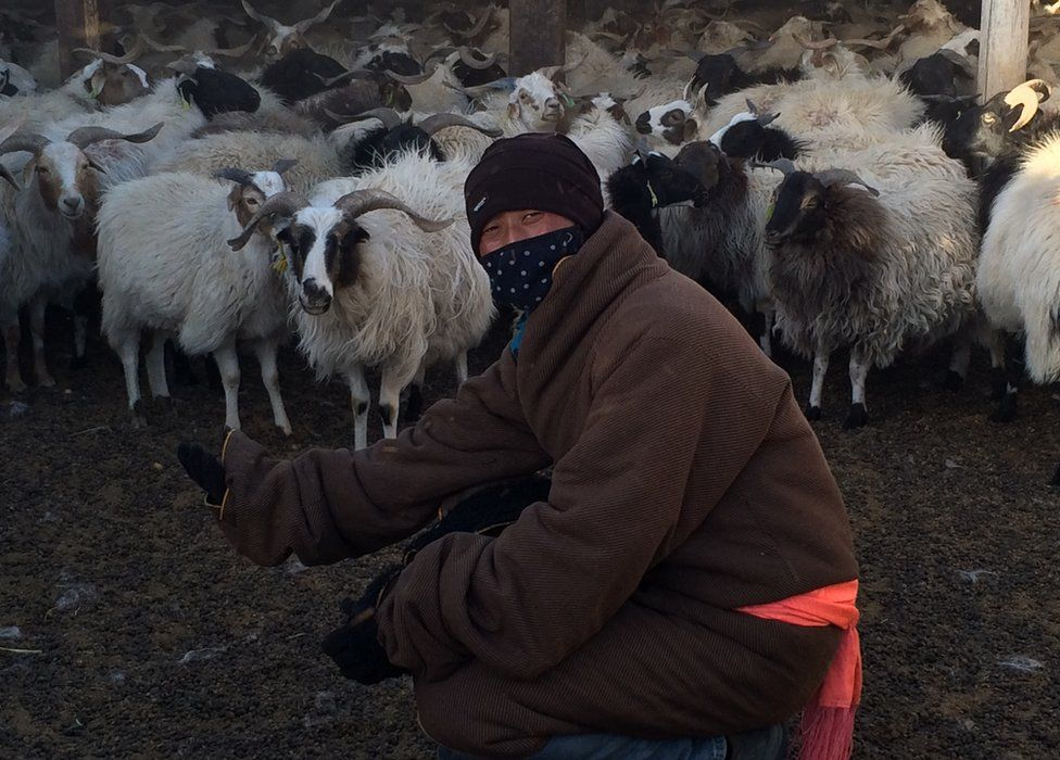 Picture of Tibetan herder Qie Qun Jia