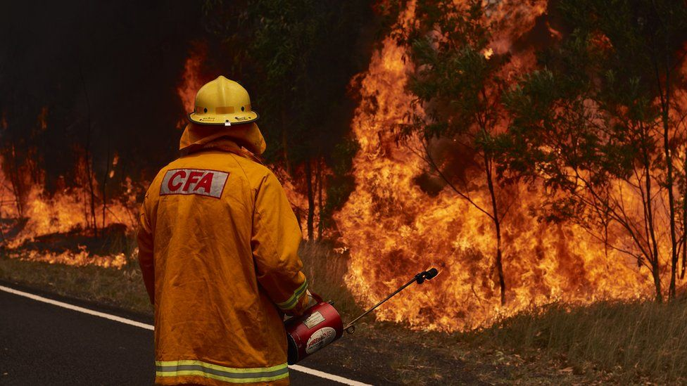 A firefighter with an extinguisher in his hand fights a blaze in NSW