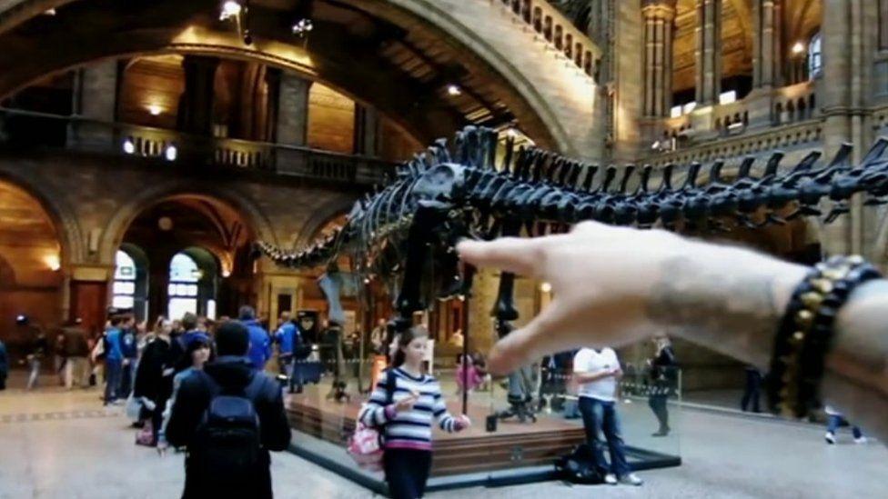 Stefan Michalak's arm inside the Natural History Museum