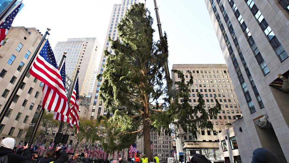 Citymd Nanuet Christmas Day 2021 Hours Rockefeller Center S Famous Christmas Tree On Brand For 2020 Bbc News
