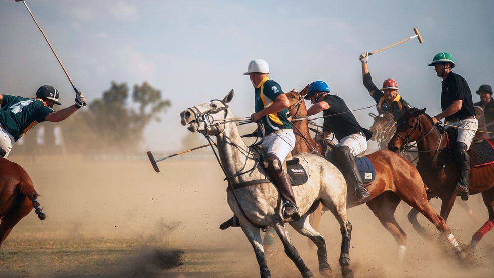 South Africa players Guy Slater (C) and Leroux Hendriks compete for the ball during a match between South Africa and Zambia at the Rosefield Polo Club, Centurion, on October 20, 2019. - South African team won the match against Zambia 7-6.