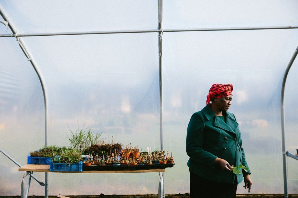 A participant stands in a polytunnel next to a table of plants