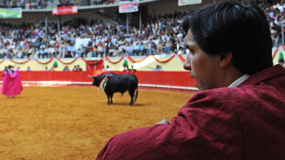 A bullfight in Portugal (file pic)