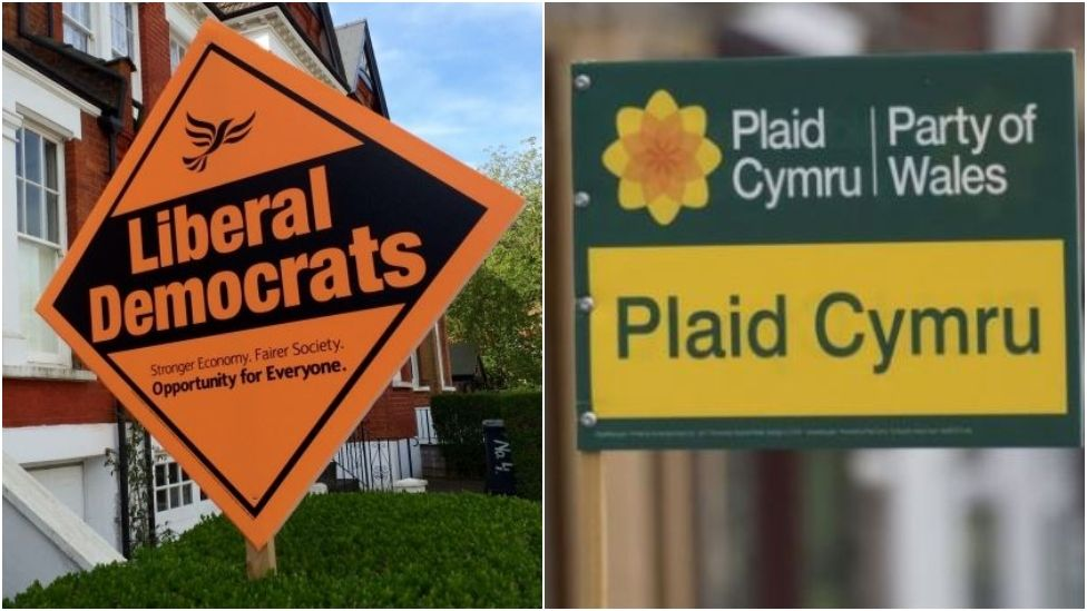 Remain parties team up for Brecon and Radnorshire by-election