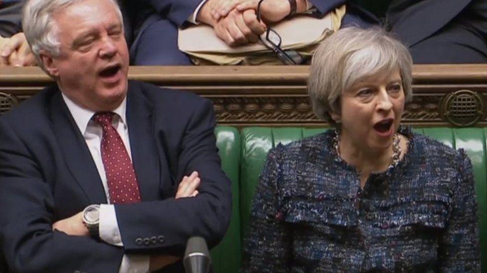 """Theresa May and David Davis shout """"aye"""""""