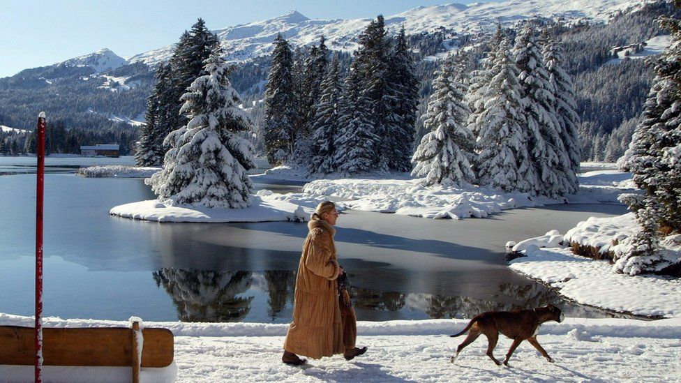 A woman walking her dog by a Swiss lake