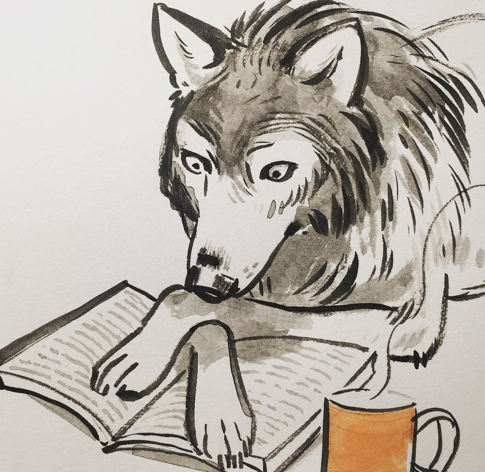 Wolf reading a book