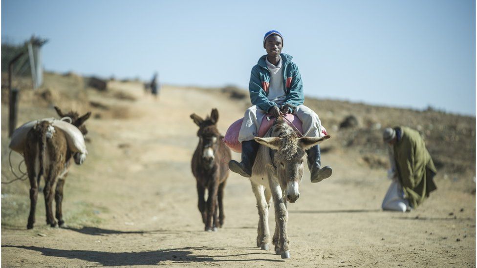 Man riding a donkey in Lesotho
