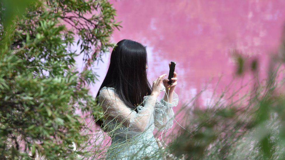 A woman uses her phone while framed against the background of the pink waters