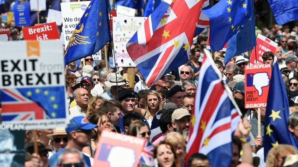 Pro-EU protesters
