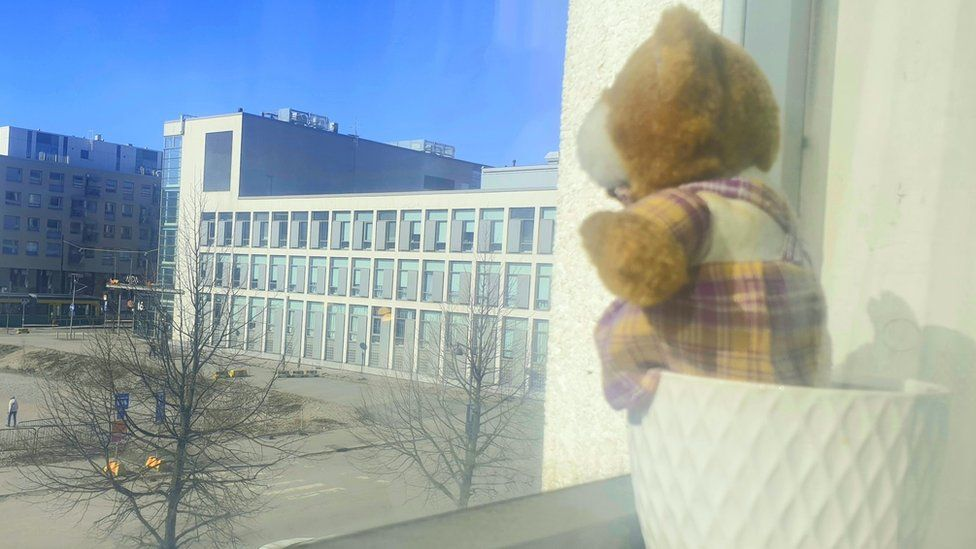 A bear on a windowsill in Helsinki, Finland